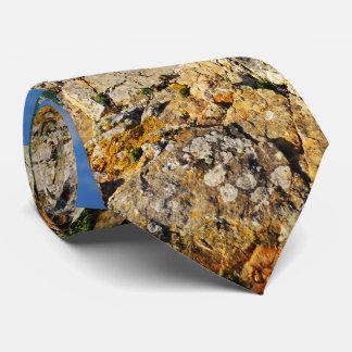 Beauty Of A Rocky Beach Tie