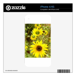 BEAUTY OF SUNFLOWER DECAL FOR THE iPhone 4