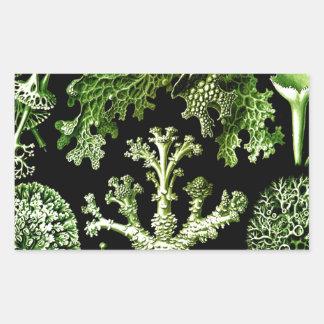 Beauty of team work and integration weave lichen rectangular sticker