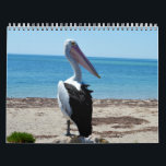 "Beauty Of The Pelicans 2018, Calendar<br><div class=""desc"">Featured in this calendar are pretty pelicans in different poses and settings.</div>"