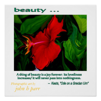 Beauty ... poster