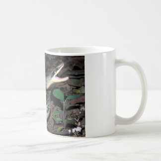 Beauty rat snake coffee mug