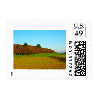 Beauty strange golden trees postage