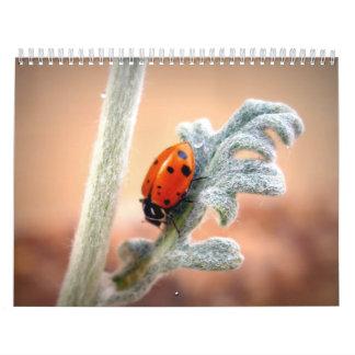 Beauty Surrounds Us Calendar