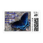 Beauty Surrounds Us Stamp