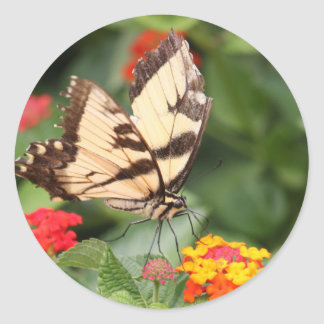 Beauty sweet and joy Tiger Swallowtail Butterfly Classic Round Sticker