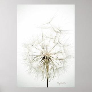"""Beauty whites"" by mysteryella Póster"