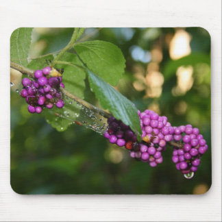 Beautyberry - Verbena Berry with Dew Mouse Pad