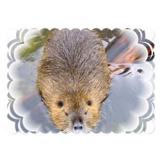 beaver-2 invitation
