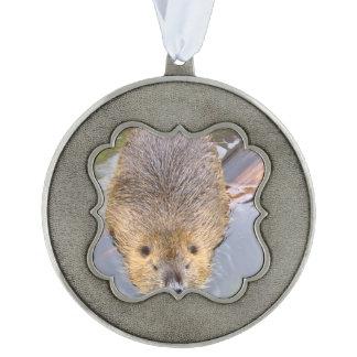 beaver-2 scalloped pewter ornament