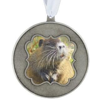beaver-4 scalloped ornament