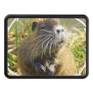 beaver-4 trailer hitch cover