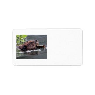 beaver address label