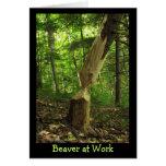 Beaver at Work Greeting Card
