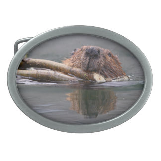 beaver oval belt buckle