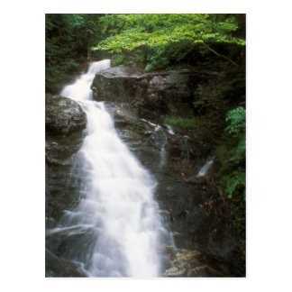 Beaver Brook cascade Mount Moosilauke NH Postcard