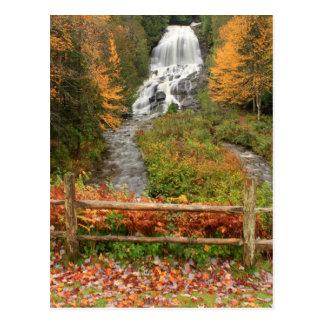 Beaver Brook Falls Colebrook Postcard