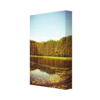 Beaver Creek Pond Canvas Print
