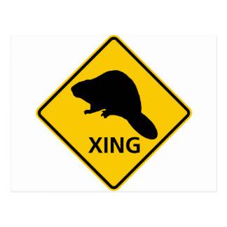 Beaver Crossing Highway Sign Postcard