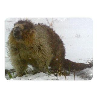Beaver Custom Invite