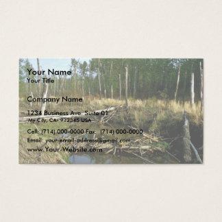 Beaver Dam Business Card