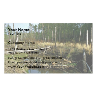 Beaver Dam Double-Sided Standard Business Cards (Pack Of 100)