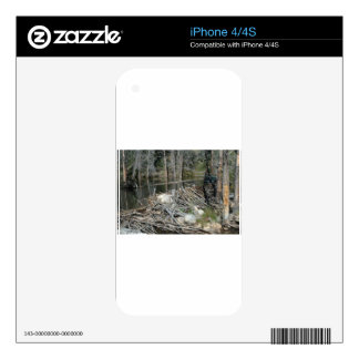 Beaver Dam Decals For iPhone 4S