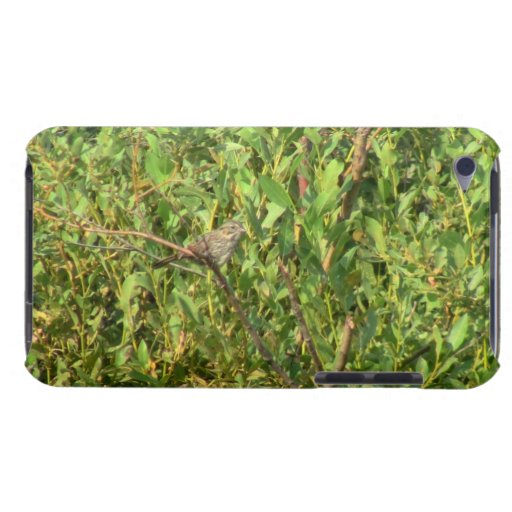 Beaver Dam Slough Fauna Birds Aves Animals iPod Touch Case
