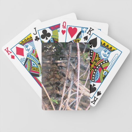 Beaver Dam Slough Fauna Birds Aves Animals Bicycle Playing Cards