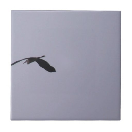 Beaver Dam Slough Fauna Birds Aves Animals Ceramic Tiles