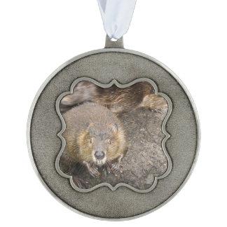 Beaver Design Scalloped Ornament