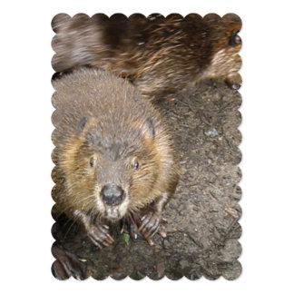 Beaver Design Personalized Announcement