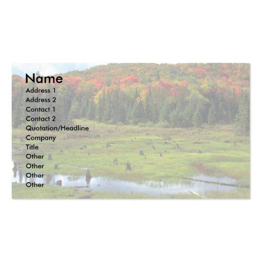 Beaver el prado y el bosque de madera dura, Quebec Tarjetas De Visita