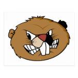 Beaver Face Postcards