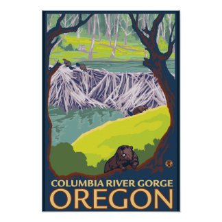 Beaver Family - Columbia River Gorge, Oregon Poster