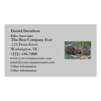 Beaver Family Double-Sided Standard Business Cards (Pack Of 100)