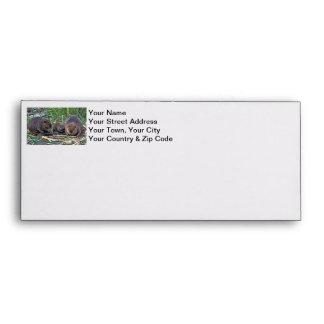 Beaver Family Envelopes