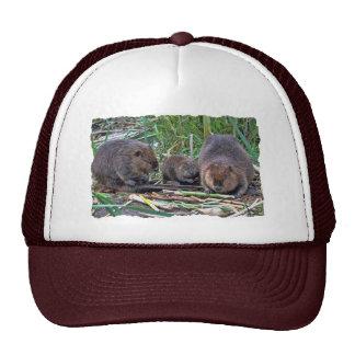 Beaver Family Hat