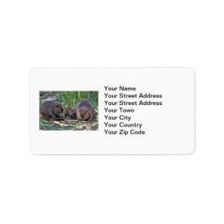 Beaver Family Label