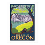 Beaver Family - The Dalles, Oregon Postcard