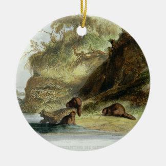 Beaver Hut on the Missouri, plate 17 from volume 1 Ornament