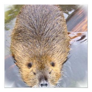 Beaver Invitation
