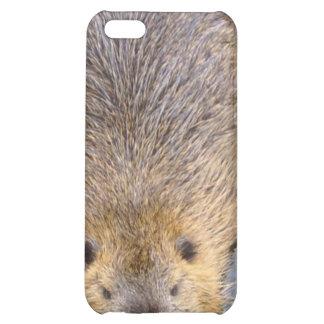Beaver iPhone Case iPhone 5C Case