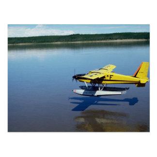 Beaver, landing on river post card