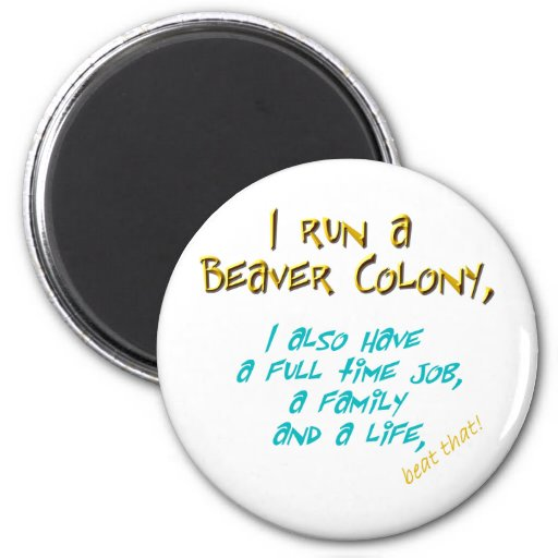beaver leader turquoise 2 inch round magnet