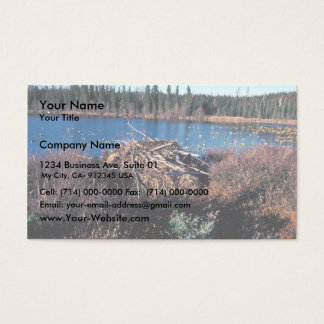 Beaver Lodge on Martin Lake Business Card