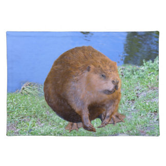 Beaver (Oregon New York) 2 Z .jpg Cloth Placemat