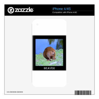Beaver (Oregon New York) 2 Z .jpg Decal For The iPhone 4