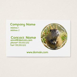 Beaver Photo Business Card