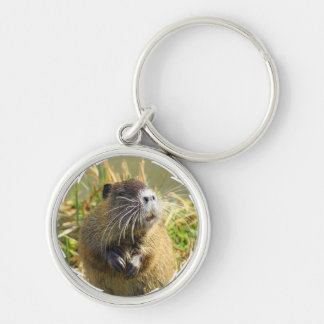 Beaver Photo Keychain